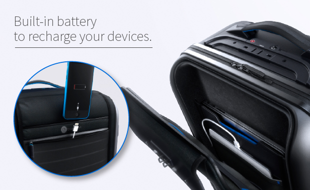 Bluesmart-Battery