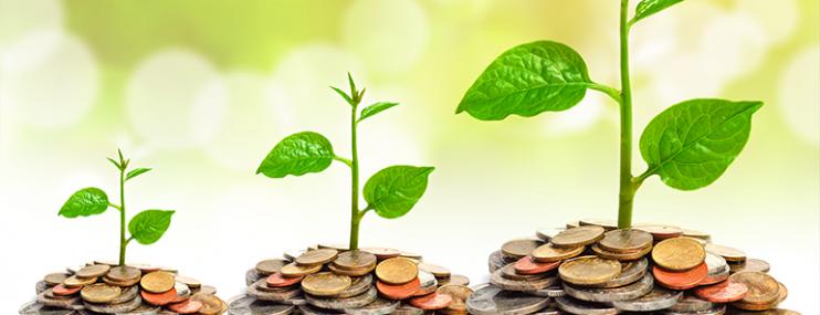 El Impacto Global Del Emprendimiento Social