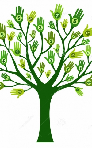 money-tree-images-money-tree-isolated-white-background-34950641_6400588410