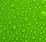 Verde ¿cómo debería ser tu marca para elegir este color?