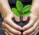 10 promesas de emprendimiento social en Latinoamérica